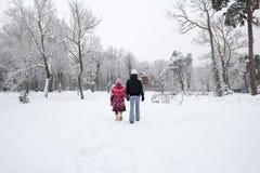 Snowy-Stadtpark Stockbilder