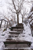 Snowy stairs covered in winter at the park Stock Images