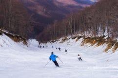 Snowy-Steigung in 3-5 Pigadia der Skimitte, Naoussa, Griechenland Stockfotografie