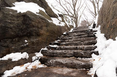 Snowy stone park stairs. Snow and ice gathered on stone stairs in Central Park, New York City Stock Images