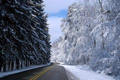 Snowy-Straße 2 Lizenzfreies Stockfoto