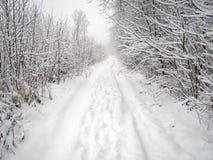 Snowy-Straße stockfotos