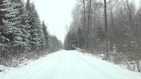 Snowy-Straße im Baum des Waldes zur kalten Winterzeit 4K stock video