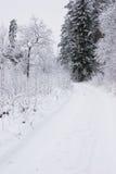 Snowy-Straße im Wald Lizenzfreies Stockbild