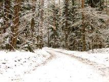 Snowy-Straße im Wald Stockfoto