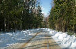 Snowy-Straße im Winterkiefernwald stockfotografie