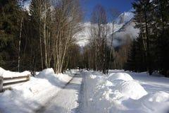 Snowy-Straße mit Alpenbergen und -bäumen im Winter Lizenzfreies Stockfoto