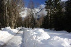 Snowy-Straße mit Alpenbergen und -bäumen im Winter Lizenzfreie Stockfotos