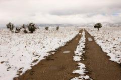 Snowy-Straße in nordöstlichem, Nevada lizenzfreies stockbild