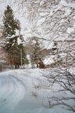 Snowy, strada di inverno in paese russo immagini stock libere da diritti