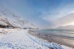 Snowy-Strand von Lofotens Lizenzfreie Stockbilder