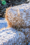 Snowy Straw Bales Closeup Royalty Free Stock Images
