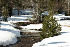 Free Snowy Stream In Pyrenees Stock Images - 12195314