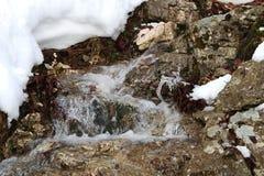 Snowy stream Royalty Free Stock Photography