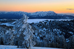Snowy sunset in the Ogden Valley. Royalty Free Stock Images