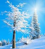 Snowy sunshine mountain landscape Stock Image