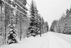 Snowy Swedish highway. Monochromatic landscape of winter road in forest Stock Photo