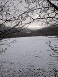 Snowy-Szene Lizenzfreie Stockfotografie
