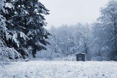 Snowy-Tag auf der Insel Stockbilder