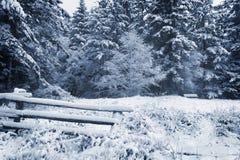Snowy-Tag auf der Insel Lizenzfreies Stockbild