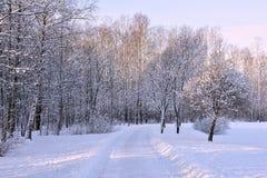 Snowy-Tag von Januar Lizenzfreie Stockbilder
