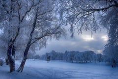 Snowy-Tag von Januar lizenzfreies stockfoto