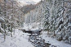 Snowy-Tal Lizenzfreies Stockbild