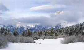 Snowy-Tal an der Unterseite von Ushba Lizenzfreies Stockfoto