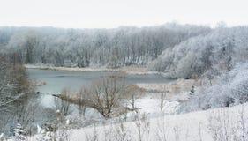 Snowy-Teich mit Bäumen Stockfoto
