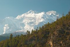Snowy-Tibetanerberge Lizenzfreies Stockbild