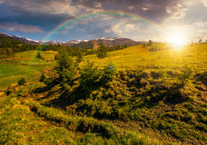 Snowy tops of carpathians in springtime at sunset Stock Photos