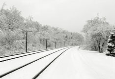 Snowy Tracks Stock Photography