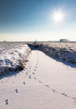 Snowy tracks Royalty Free Stock Photo