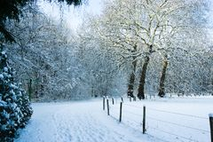 Snowy trail on the border of the Forrest an the meadow stock photography
