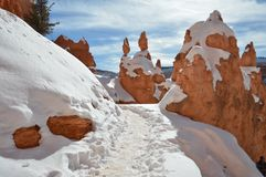 Snowy Trail in Bryce Canyon, Utah. Snowy trail through red rock formations in Bryce Canyon, Utah royalty free stock images