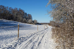 Snowy trail Royalty Free Stock Images