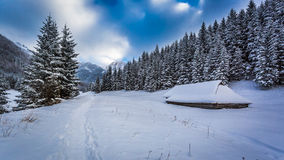 Snowy trail at the mountain peak Stock Images