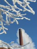 Snowy tree near factory. Snowy tree on a bright day near factory Stock Photography