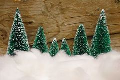 Snowy trees christmas backdrop Stock Photography
