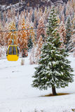 Snowy trees and colorful rail car royalty free stock photos