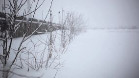 Snowy trees and fence along winter road covered in. Thick snow during snowfall. 1920x1080 stock footage