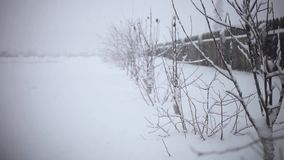Snowy trees and fence along winter road covered in. Thick snow during snowfall. 1920x1080 stock video footage