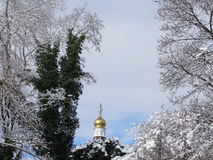 Snowy trees and golden dome of the church. Golden dome of orthodox temple against winter trees Stock Photography