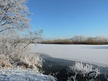 Snowy trees near river, Lithuania Stock Photo