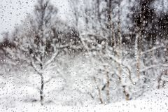Snowy trees through water drops. Snowy trees seen through a glass with water drops royalty free stock photography