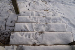 Snowy-Treppe Lizenzfreies Stockfoto