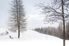 Snowy und nebelige Gebirgswinterlandschaft lizenzfreie stockfotos