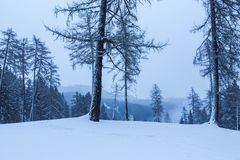 Snowy und nebelige Gebirgswinterlandschaft stockfoto