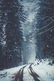 Snowy und nebelige Straße in einem Winterwald lizenzfreie stockfotos