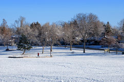 Snowy Urban Park in Boulder, CO Stock Photos